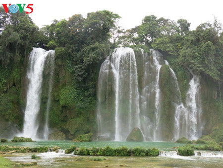 东南亚最大的天然瀑布——板约瀑布 hinh 9