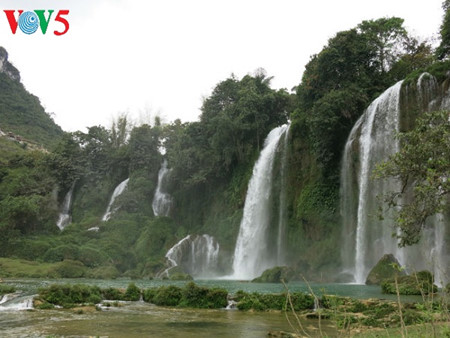 东南亚最大的天然瀑布——板约瀑布 hinh 10