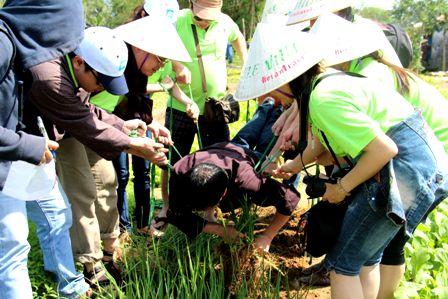team buiding, nueva modalidad turistica en vietnam hinh 1