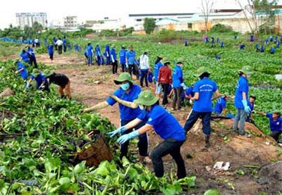 Young Hanoians respond to International Volunteer Day