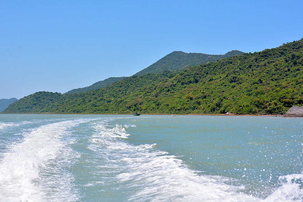 ba mun island - a paradise for wild animals hinh 0