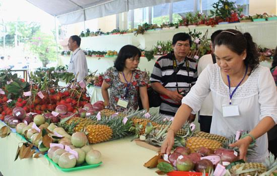 strengthening vietnamese foothold in overseas fruit markets hinh 1