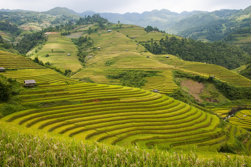 Yen Bai province, an alluring destination in the northwest Discovery Vietnam
