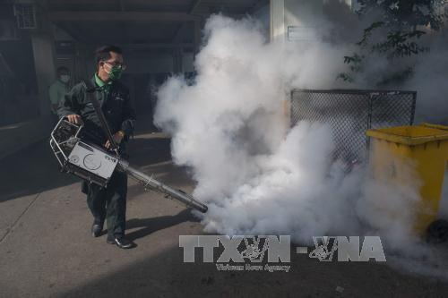 thailand raises zika alert level hinh 0